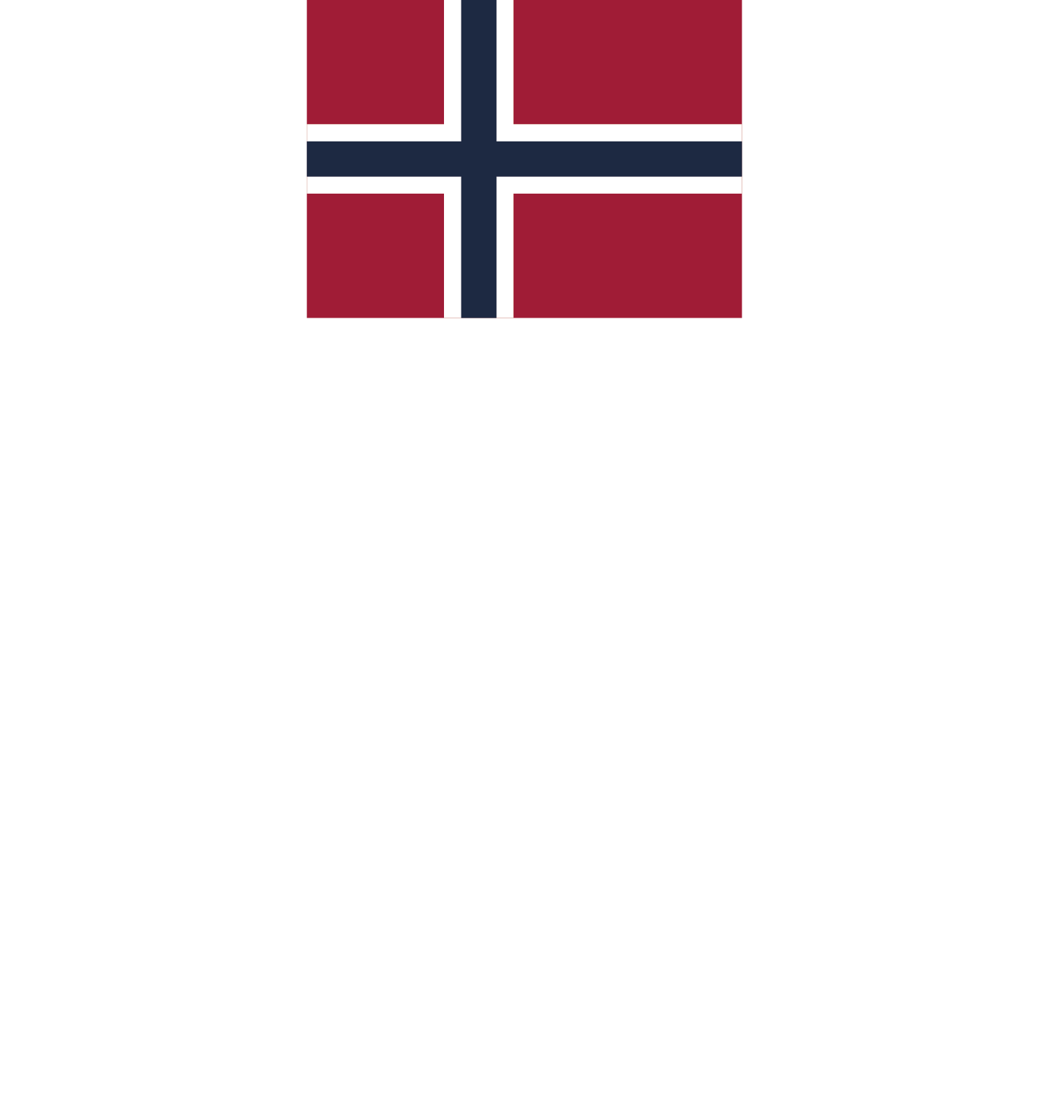 Norse Beer